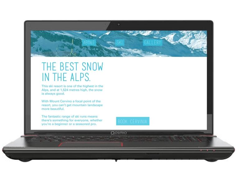 ski screen laptop